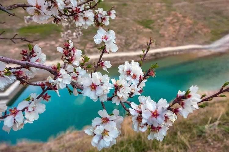 عکس جاذبه های طبیعت گردی اصفهان در بهار
