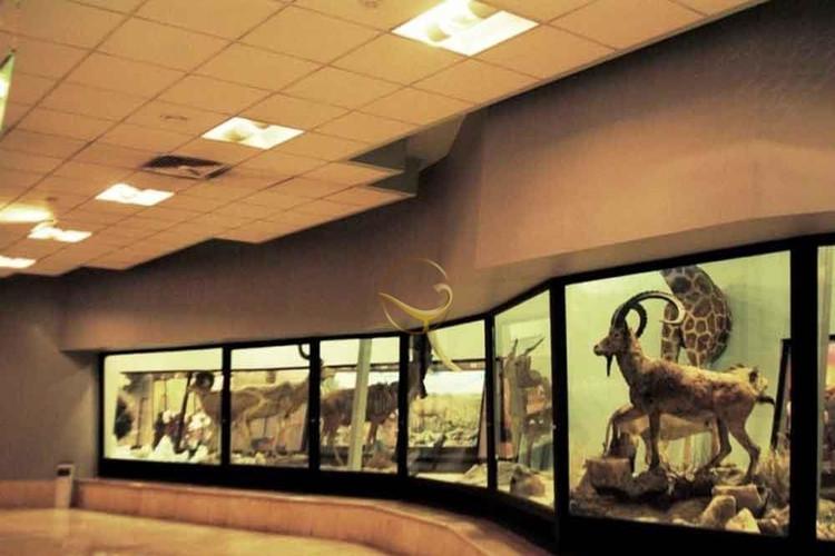 عکس موزه حیات وحش پردیسان