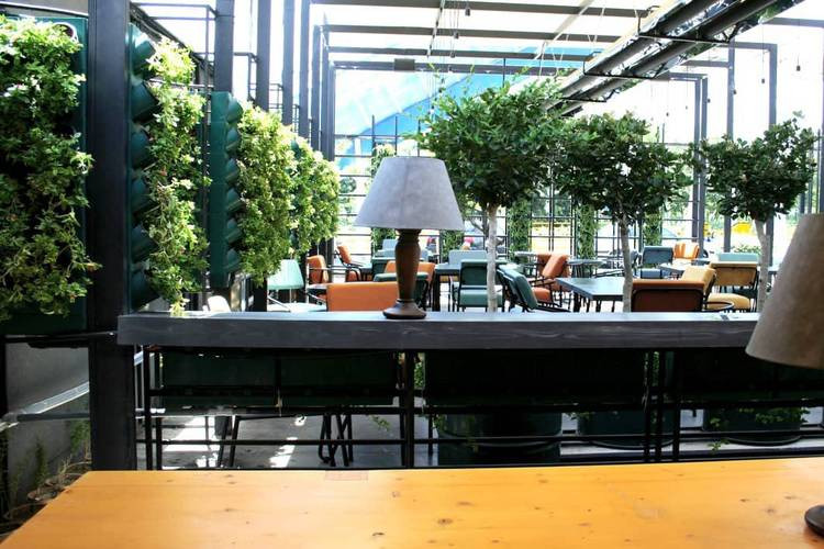عکس کافه رستوران اپيزود